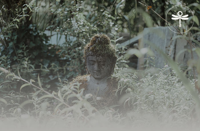 Titelbild-Buddha-Seminarhaus-ImAeuele