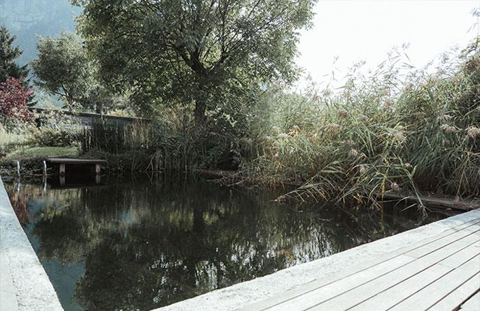Schwimmteich-Seminarhaus-ImAeuele